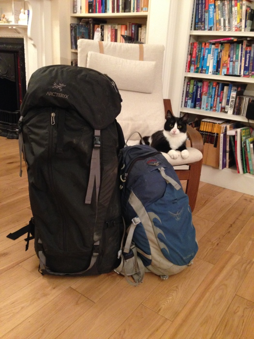 Tim's luggage, plus a cat for scale.