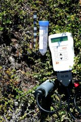 Measuring the soil moisture.
